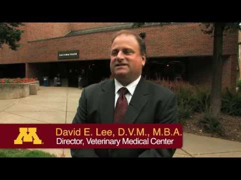 Welcome to the UMN Veterinary Medical Center