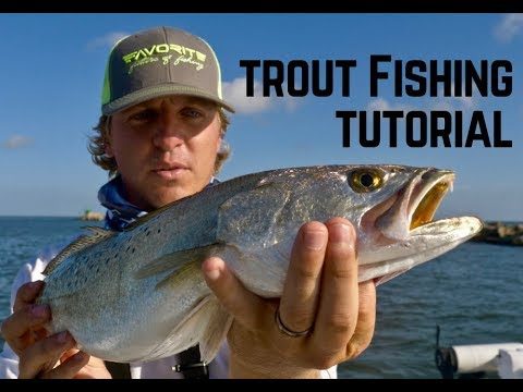 HOW TO CATCH TROPHY SPECKLED TROUT EASY + Nonstop Sea Trout Fishing With Tips