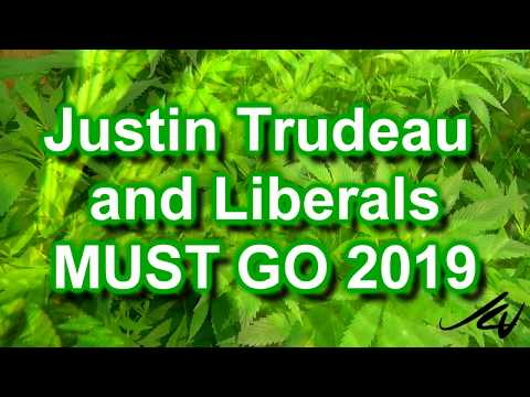 """Stoned and wasted "" Trudeau's  Canada - Opinion and final word -  YouTube"