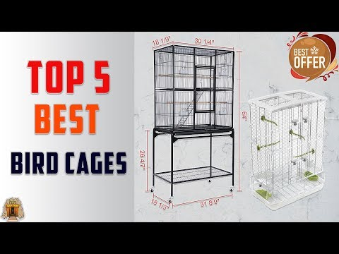 Top 5 Best Birds Cages For Your Flying Bird In 2020