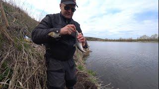Рыбалка на Оке в начале мая