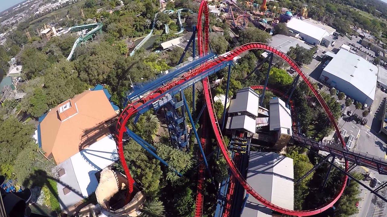 Sheikra roller coaster at 60fps busch gardens tampa youtube - Busch gardens tampa roller coasters ...