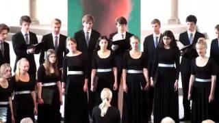 Kammerchor des Musikgymnasiums Stockholm: Kristallen den fina (Kristall, der Feine), EJCF Basel 2012