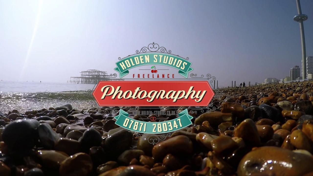 Dog and puppy beach photoshoot 📷 -mini clip-