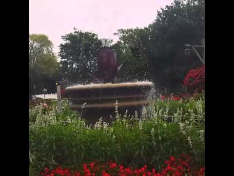 Corby Park Rose Garden- Belleville Ontario