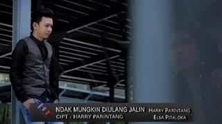 Gambar cover Harry Parintang feat Elsa Pitaloka - Ndak  Mungkin Diulang Jalin