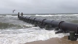 Playing in Chesapeake Bay as Florence's winds arrive
