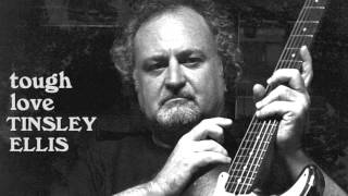 Tinsley Ellis - In From The Cold
