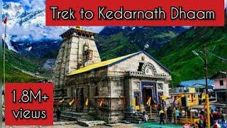 केदारनाथ धाम की यात्रा | कठिन चढ़ाई | भोले के भक्त | Kedarnath Trek June 2017 |