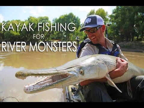 Giant Snakehead Vs Alligator Gar Rip My Alligator