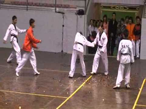 Biểu diễn Taekwondo team Viet Nam