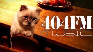 Meow Mix song - Meow Cat Mix Single