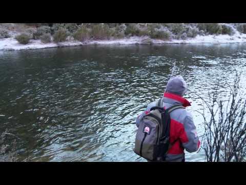 Fishing Edge - Eucumbene Spawn Run Brown Trout