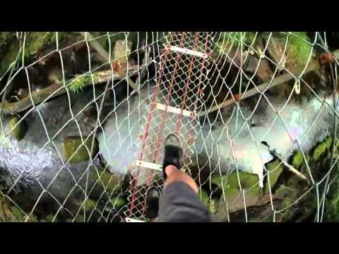 Video Seeking Pristine Singletrack Along North Island s Te Iringa Track NZ