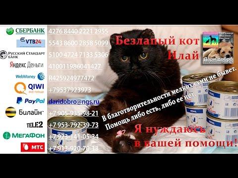 Кредиты наличными, Банковские карты, Вклады
