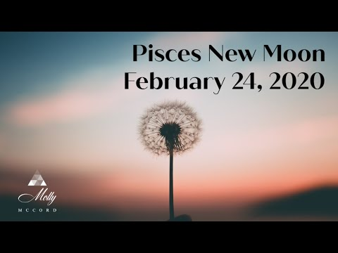 Today's New Moon In Pisces Love Horoscopes + Tarot Card Readings For All Zodiac Signs On Sunday, February 23, 2020