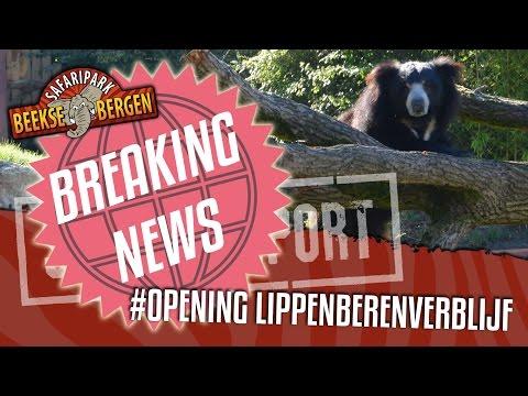 SAFARI REPORT [BREAKING NEWS] | OPENING LIPPENBERENVERBLIJF