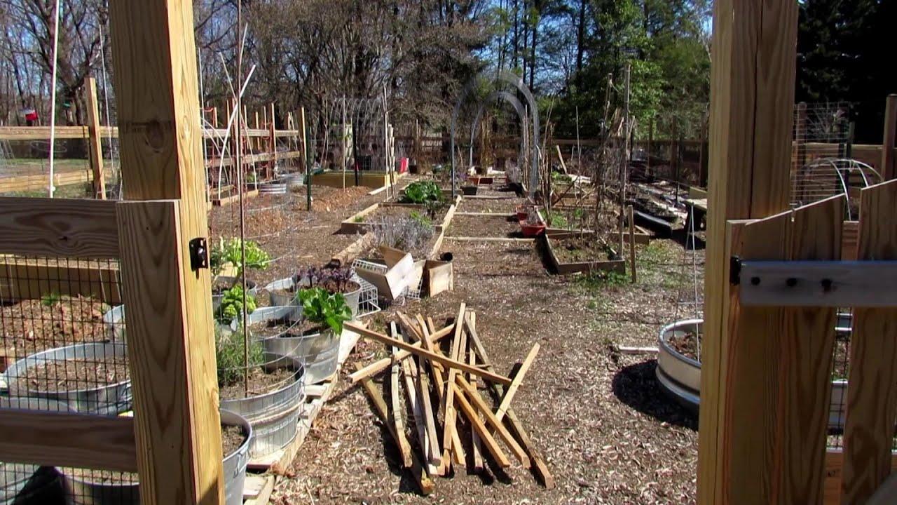 10 Basic Garden Beds Trellis Designs For Vertical Garden Spring