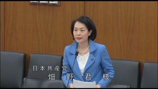 2015.4.22 衆院文部科学委員会 畑野君枝議員の質問.