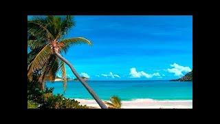 Calming Sea - Relaxing 2 Hour - Birds Singing