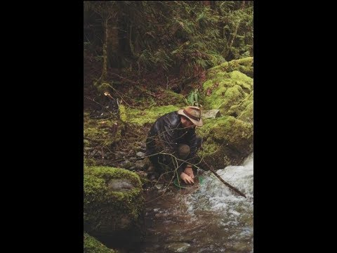 Treasure and Gold Prospecting leads in British Columbia