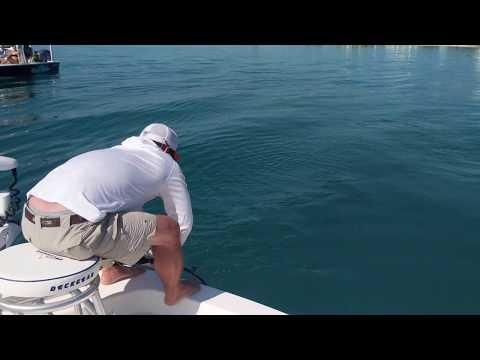 Justin Goliath Grouper Fishing Boca Grande