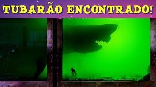 O TUBARÃO BRANCO ENCONTRADO Em Um PARQUE ABANDONADO!