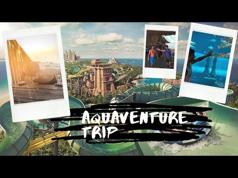 WELCOME TO AQUAVENTURE WATERWORLD | VLOG | PALM ISLAND | DUBAI