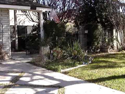 Order #2061303    2476 San Fernando Court Claremont, CA 91711