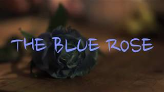 The Blue Rose Trailer