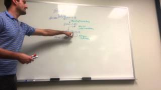 Made Simple:  Glycogen Synthesis, Breakdown, and Storage diseases!