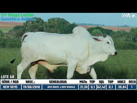 LOTE 68 - REM 10115 - 17º Mega Leilão Genética Aditiva 2020