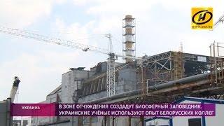 Чернобыль. Репортаж из зоны отчуждения(Над четвёртым энергоблоком Чернобыльской атомной станции к концу года появится новое защитное сооружение..., 2016-04-25T18:47:38.000Z)