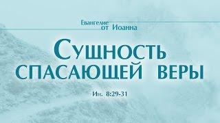 """Проповедь: """"Ев. от Иоанна: 48. Сущность спасающей веры"""" (Алексей Коломийцев)"""