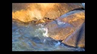 music:  La Grande Cascade, by Renè Aubry