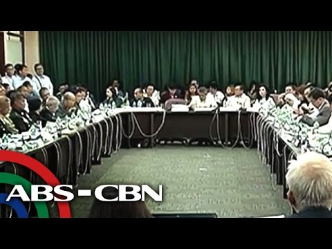 What did the Lower House find out in Mamasapano probe?