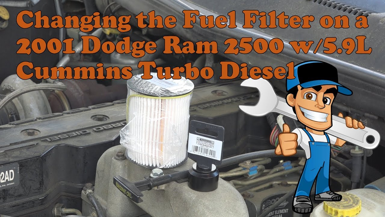 2001 dodge ram 2500 with the cummins 5 9l turbo diesel fuel filter change [ 1280 x 720 Pixel ]