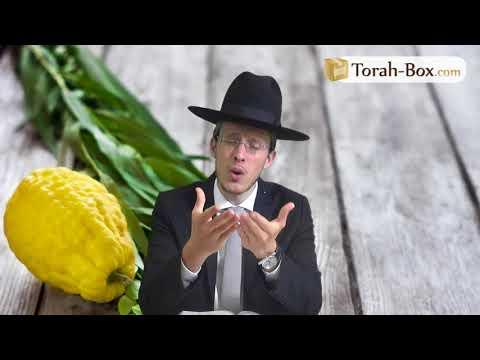 Ne perds pas la nuit d'Hochaana Rabba ! (Rav Shimon Gobert)