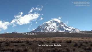 Parc national Sajama, Bolivie
