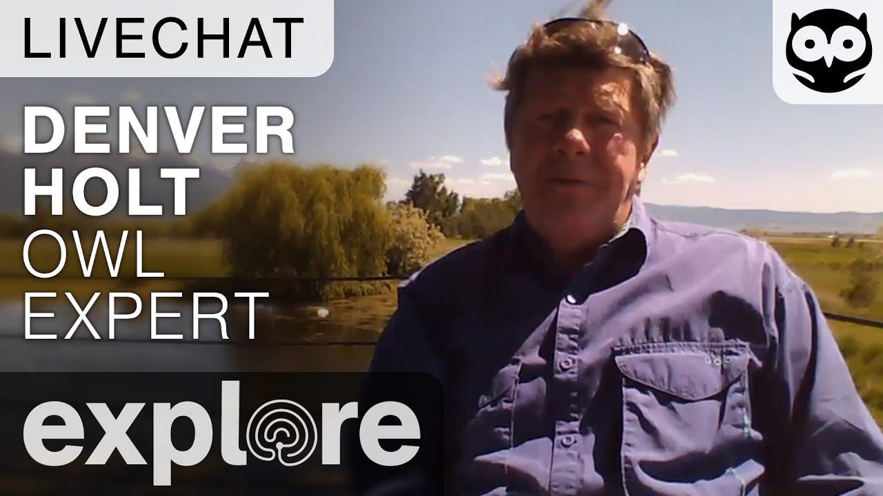 Denver Holt - Owl Expert - Live Chat