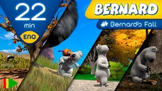 Bernard Bear | Bernard