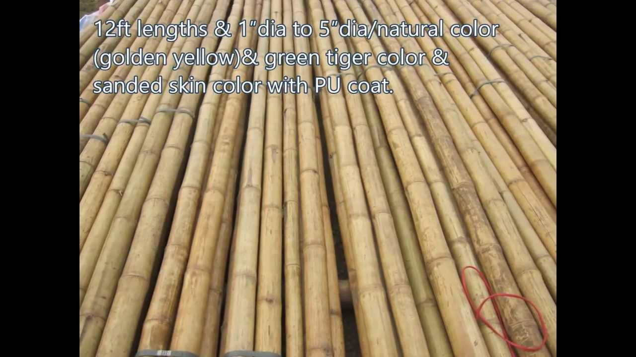 03 01creasian S Real Bamboo Poles Grass Fast Palm Thatch