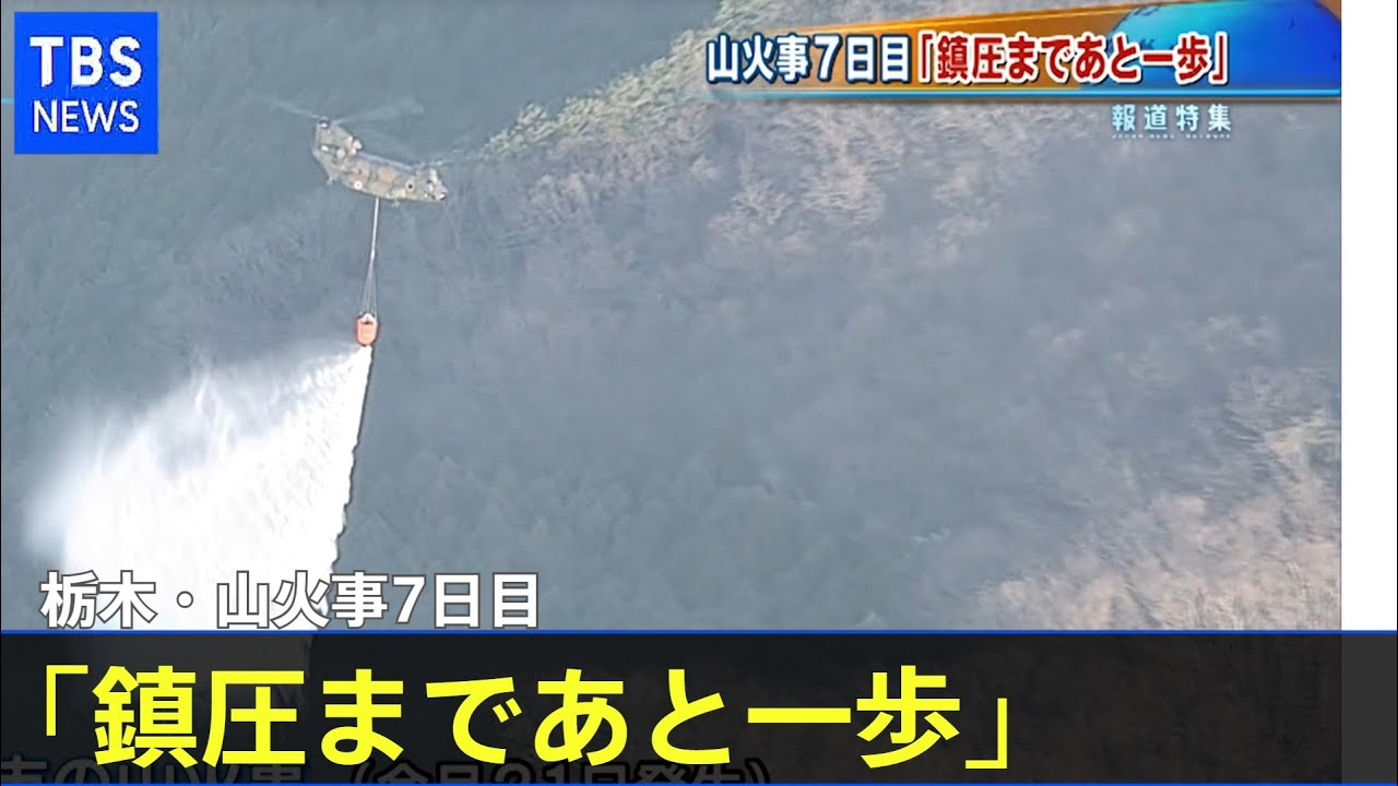 原因 栃木 山 火事