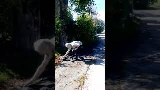 Schneit Woods reitet wieder! - Frohbotschaft aus der Brennraumgemeinde