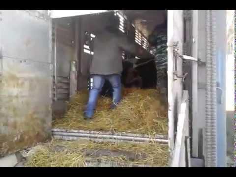 рыбная мука оптом купить \ рыбная мука москва цена в России - YouTube