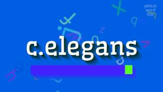 how to say c elegans high quality voices