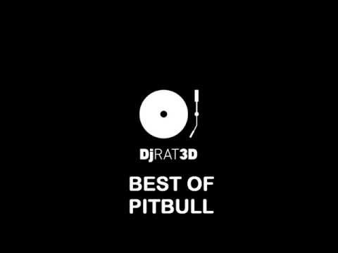 Best of Pitbull (Dj RAT3D 2013 Mix)