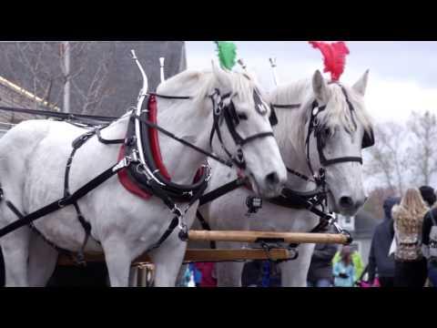 Gahanna Ohio Holiday Lights Celebration - 2016