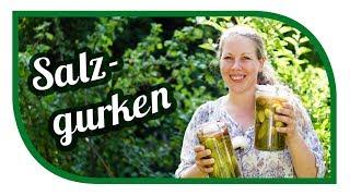 Salzgurken selber einlegen 🥒 Original Rezept vom Gärtner 🥒 Gurken einmachen