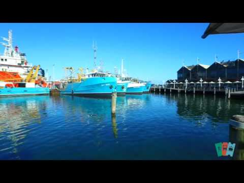 Fremantle Fishing Boat Harbour | Sightseeing Pass